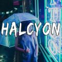 Halcyon™ Small Banner