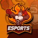 FAW ESPORTS Small Banner