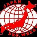 Classic Japanese Pro Wrestling Small Banner