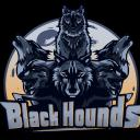 Black Hounds Small Banner