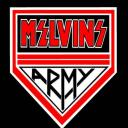 (the) Melvins Server Small Banner