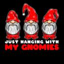 Hanging With Gnomies Small Banner