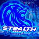 Stealth Team Small Banner