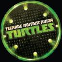 TMNT Into the Turtleverse Small Banner
