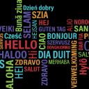 Practice Your Language Small Banner