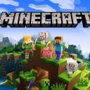 Minecraft Gamers Small Banner