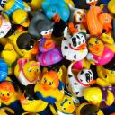 Rubber Duckies Small Banner