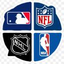 League of Sports Small Banner