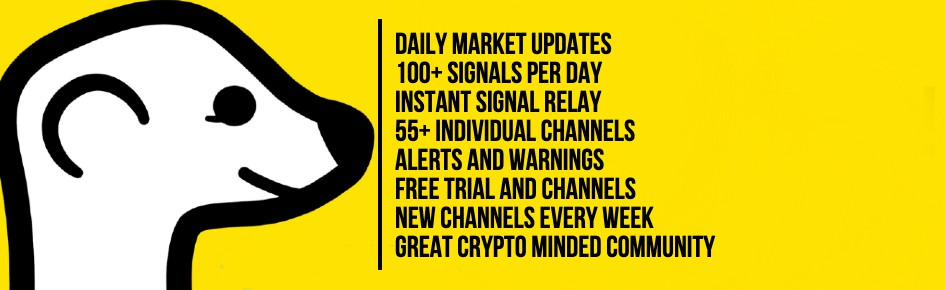 Meerkat Crypto Signals Large Banner